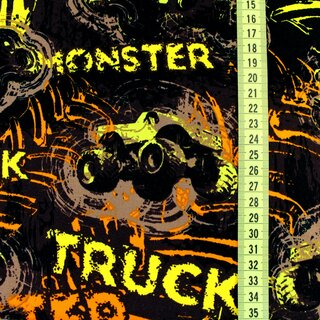 Biosweat Monstertrucks (GOTS)